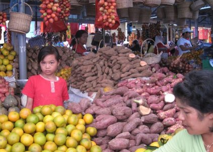 Brastagi Market