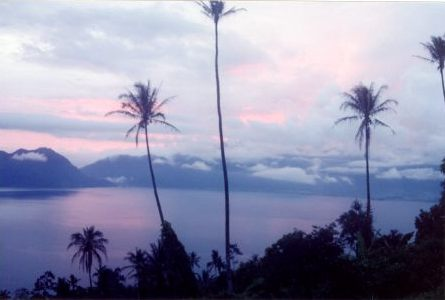 maninjau palmen - Lake Maninjau