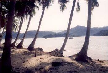 sikuai palmenstrand bergen - Pulau Banyak, Poncan Gadang, Sikuai, Cubadak