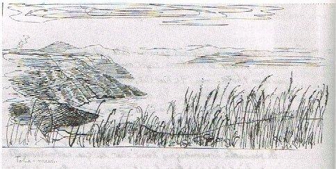 Tobameer Drawing